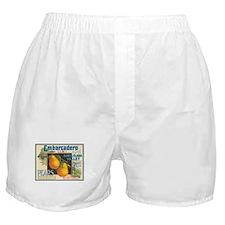 Embarcadero Pears Boxer Shorts