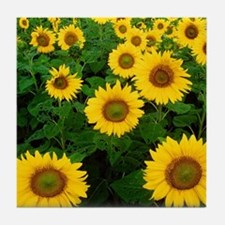 Field of Sunflowers Tile Coaster
