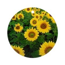 Field of Sunflowers Ornament (Round)
