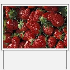 Bushel of Strawberries Yard Sign