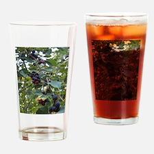 Juneberries Drinking Glass