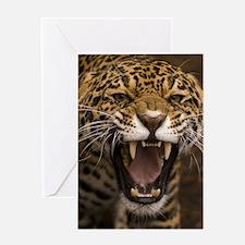 Growling Jaguar Greeting Cards