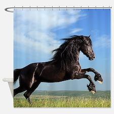 Black Horse Running Shower Curtain
