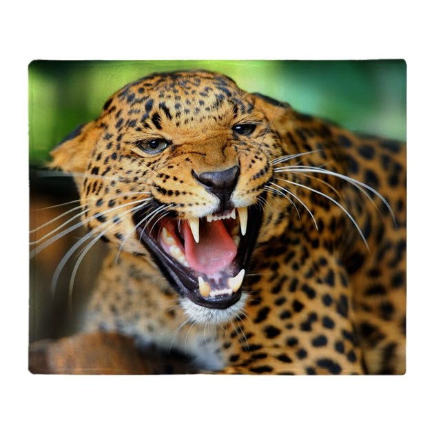 Leopard Growl: Growling Leopard Throw Blanket By WickedDesigns4
