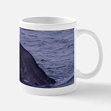 Sperm Whale Diving Mugs