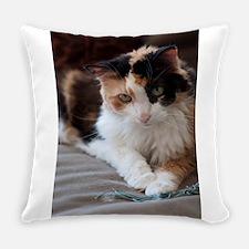 _DSC0028.jpg Everyday Pillow