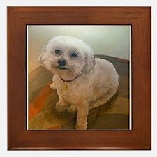 Miniature Poodle Angus Framed Tile