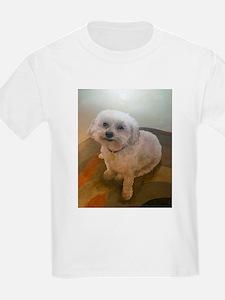 Miniature Poodle Angus T-Shirt
