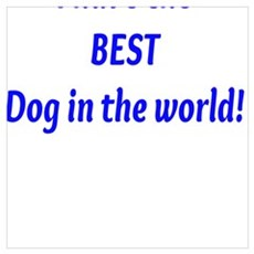 I have the BEST Dog in the world! Poster