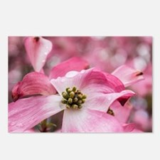 spring showers Postcards (Package of 8)