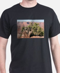 Dead Horse Point State Park, Utah, USA 9 T-Shirt