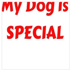 My Dog is SPECIAL Poster