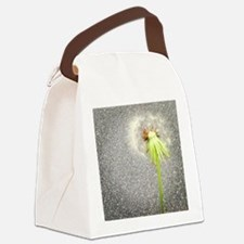 Make A Wish Canvas Lunch Bag