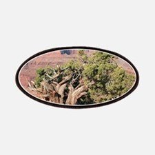 Dead Horse Point State Park tree, Utah, USA Patch