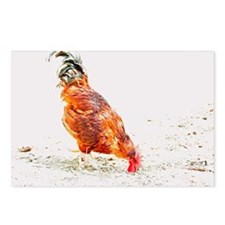 Rooster 2 Postcards (Package of 8)