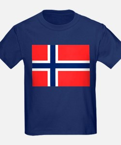 Flag of Norway T