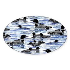 Lots of Loon Decal