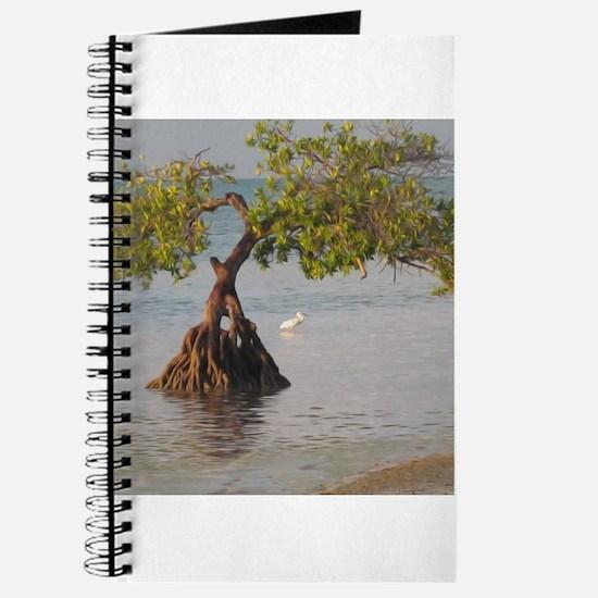 Beach Tree and Shorebird Journal