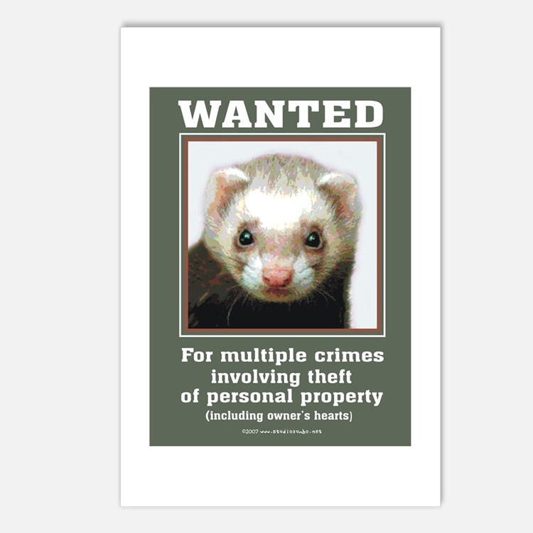 Ferret Wanted Poster Postcards (Package of 8)