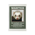 Ferret Wanted Poster Rectangle Magnet (100 pack)
