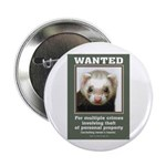 Ferret Wanted Poster 2.25