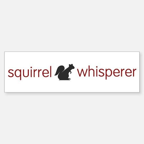 squirrel-light Bumper Bumper Bumper Sticker