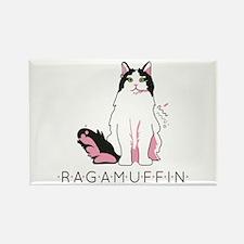 Ragamuffin cat Magnets