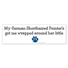 Wrapped Around Her Paw (German SH Pointer) Bumper Sticker