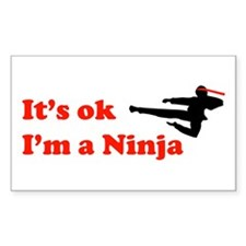 It's OK I'm a Ninja Rectangle Decal