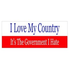 Love My Country Hate The Government Poster