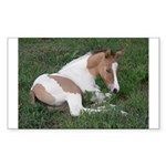 Sleeping foal Rectangle Sticker