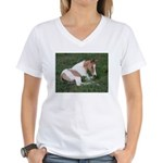 Sleeping foal Women's V-Neck T-Shirt