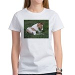 Sleeping foal Women's T-Shirt