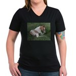 Sleeping foal Women's V-Neck Dark T-Shirt