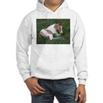 Sleeping foal Hooded Sweatshirt