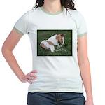 Sleeping foal Jr. Ringer T-Shirt