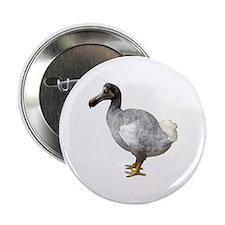 Dodo Button