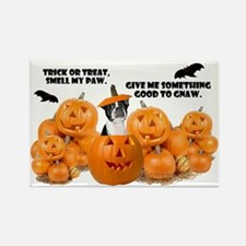 Trick Or Treat (Boston Terrier) Rectangle Magnet (