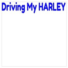 I'd rather be Driving My HARLEY Poster