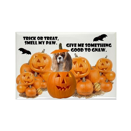 Trick Or Treat (Cavalier) Rectangle Magnet (10 pac