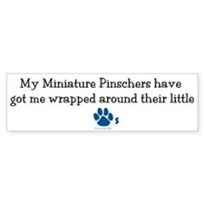 Wrapped Around Their Paws (MinPin) Bumper Sticker