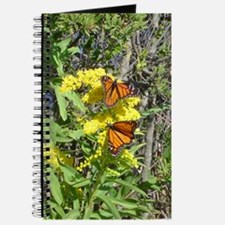 Cape May Butterflies Journal