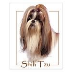 Shih Tzu-2 Small Poster