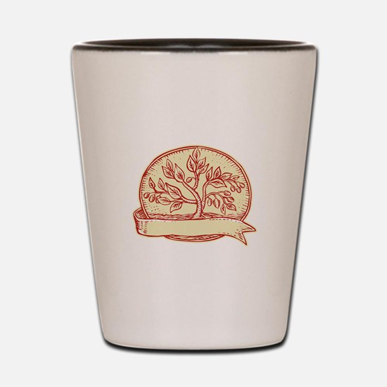 Olive Tree Ribbon Oval Etching Shot Glass