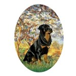 Spring / Rottweiler Ornament (Oval)
