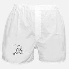 IWantToBuyAnElectricCar Boxer Shorts