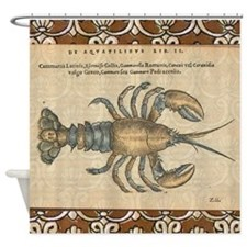 Vintage Lobster illustration Shower Curtain