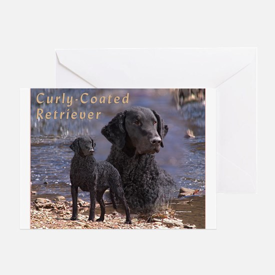 Curly Coated Retriever-2 Greeting Card