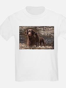 Curly Coated Retriever-3 T-Shirt