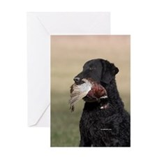 Curly Coated Retriever-6 Greeting Card